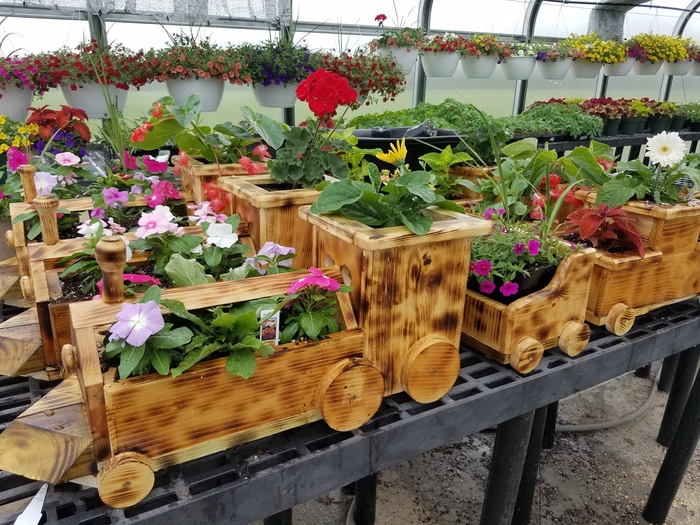 Train Planter Set